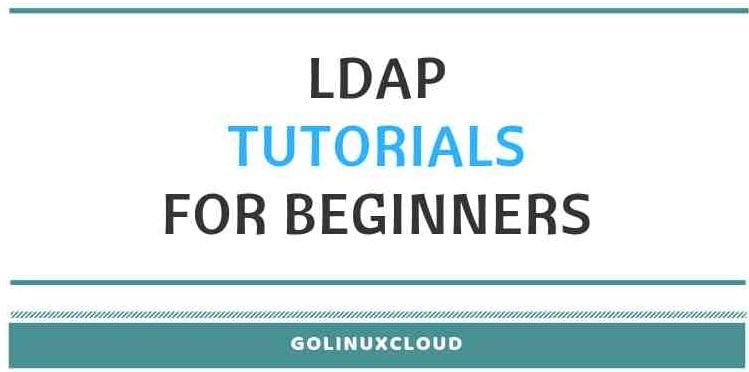 LDAP Tutorial for Beginners - Understanding Terminologies, Basics & Usage