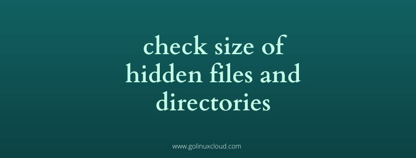 check size of hidden files and folders in Linux