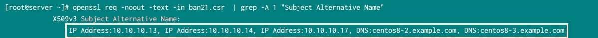 openssl subject alternative name