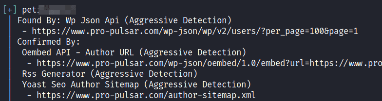 WPScan: WordPress Vulnerability Scanner Guide [5 Steps]