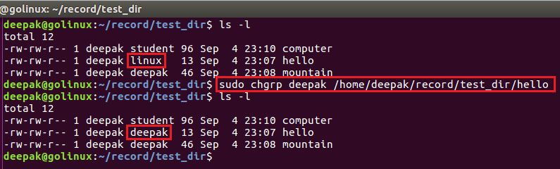 chgrp command to change group ownership with file path