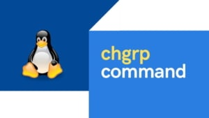 10 most used chgrp command examples in Linux