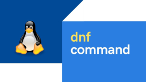 25+ DNF command practical examples in Linux
