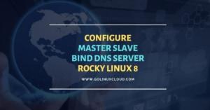 Setup Master Slave BIND DNS server Rocky Linux 8 [Step-by-Step]