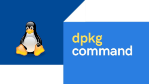 15+ dpkg command examples in Linux [Cheat Sheet]