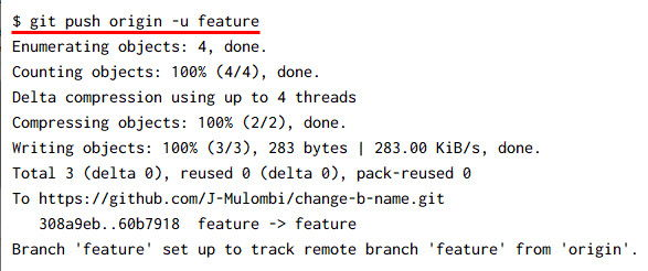 git change branch name PROPERLY [3 Examples]
