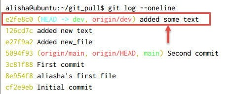git fetch vs git pull Explained [With Examples]