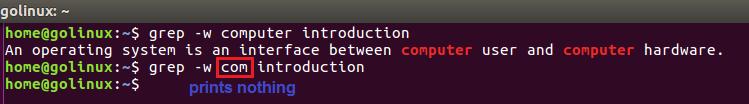 grep -w command output