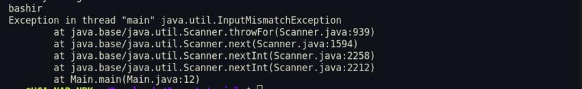 java user input