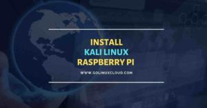 Install Kali Linux on Raspberry Pi [Step-by-Step]