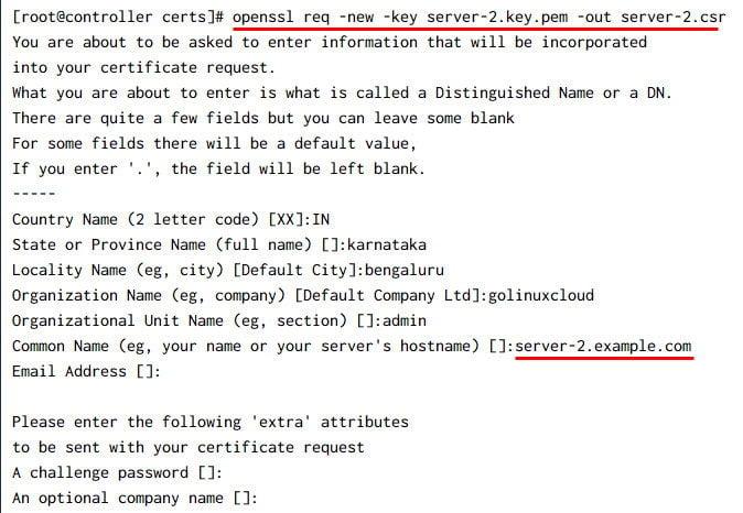 Generate duplicate certificates OpenSSL CA [Same CN]