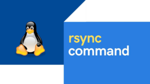 20+ rsync command examples in Linux [Cheat Sheet]